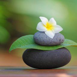 osnovni_kurs_meditacije